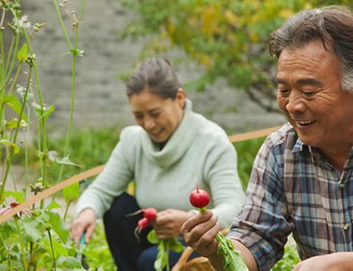Investir dans une résidence senior: bénéficiez d'une réduction fiscale