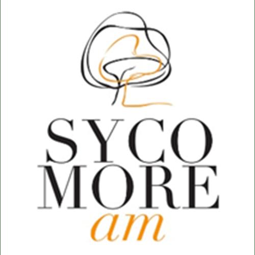 Sycomore partenaire Axesscible